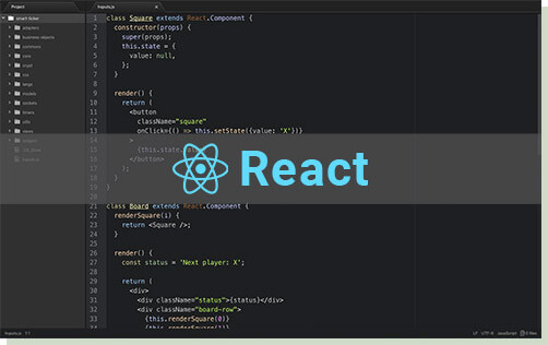 React JS development for high speed and interactive applications